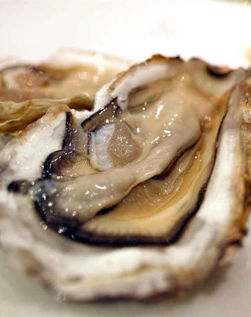 IFF 牡蛎香精